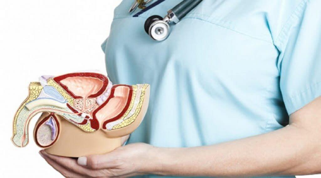 Prostatita prostatita.adonisfarm.roare :) | Forumul Medical ROmedic